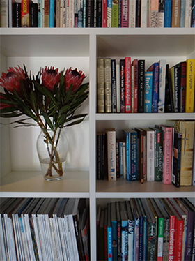 beautiful bookcase design